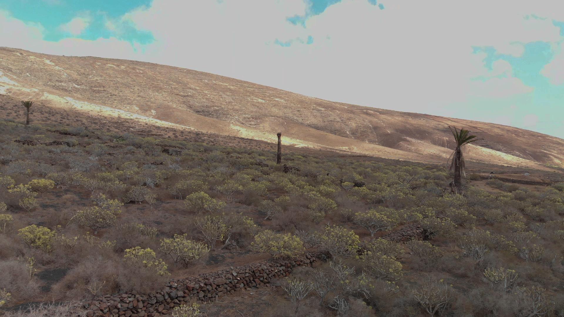 YouTube 190918 Tabayesco 2 Valle de Temisa 0230 0231