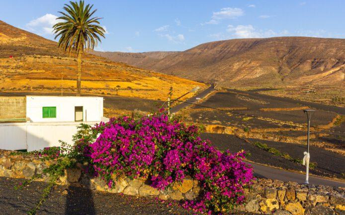 2018 08 Lanzarote TabayescoInTheMorning 001