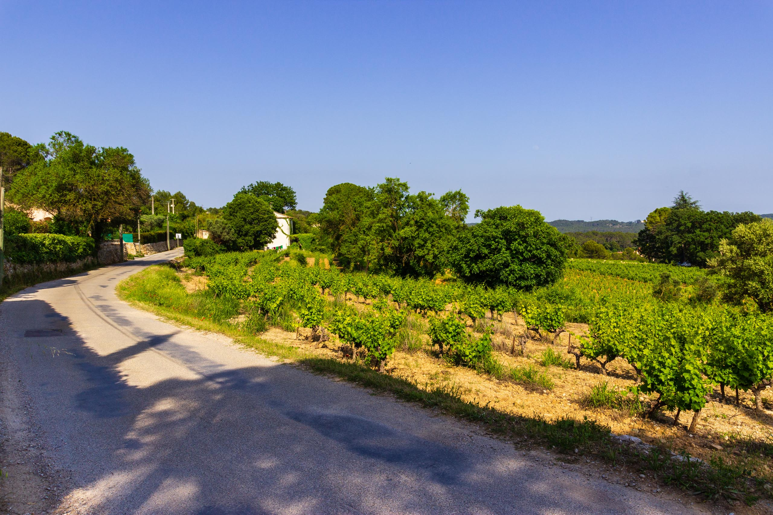 2018 05 Provence LaCouaste 001