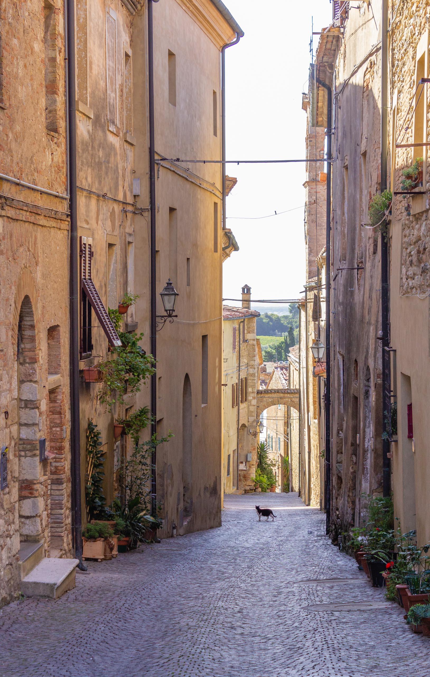2013 10 Tuscany Bibbona 003