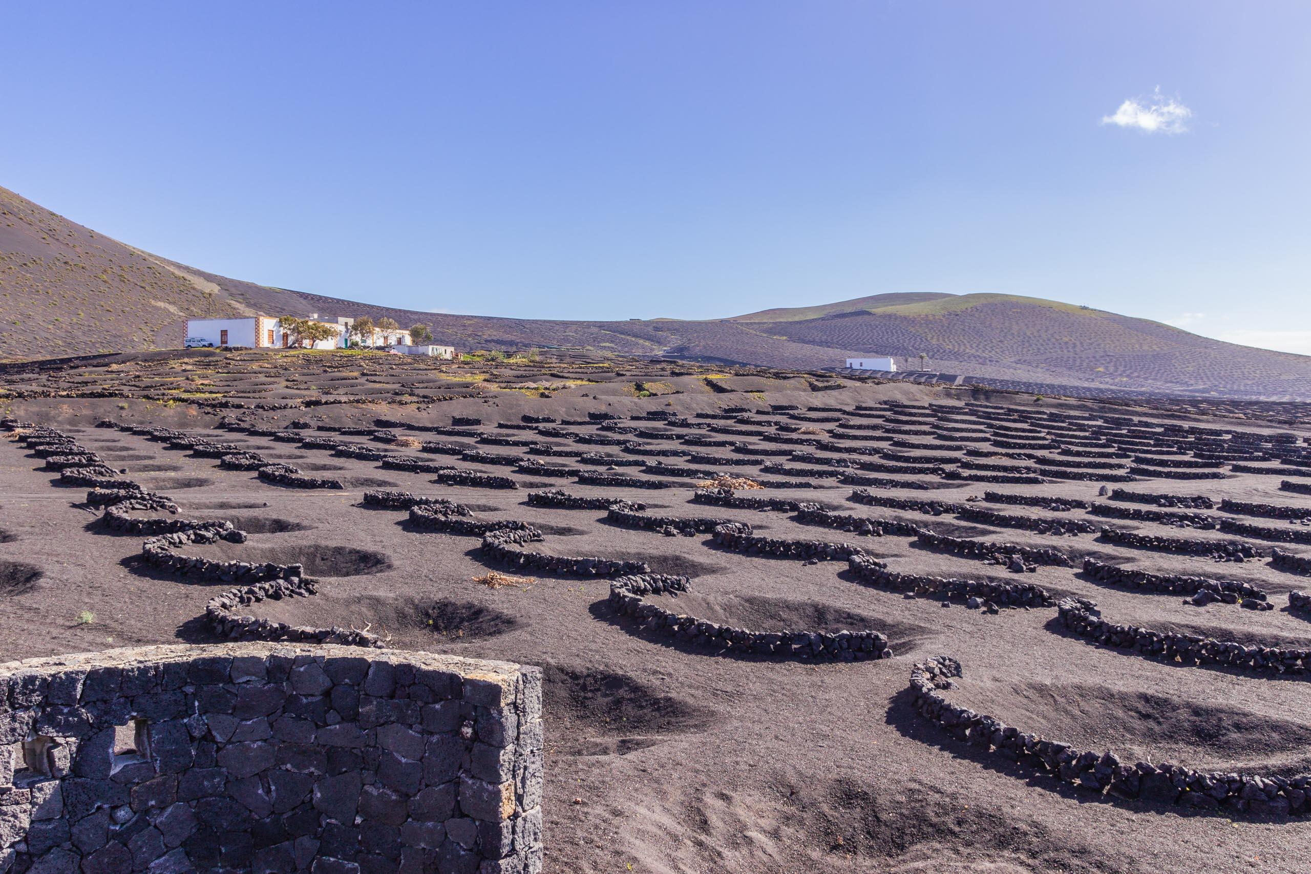 2014 02 Lanzarote LaGeria 001
