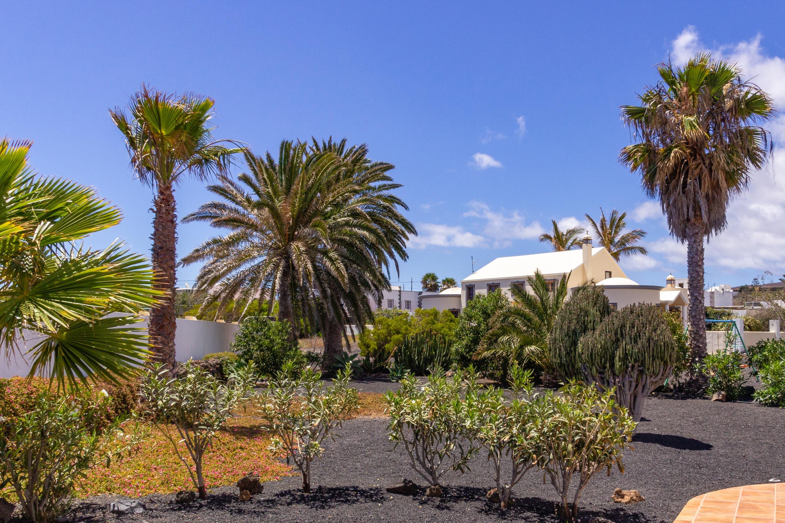 2014 06 Lanzarote Garden 001